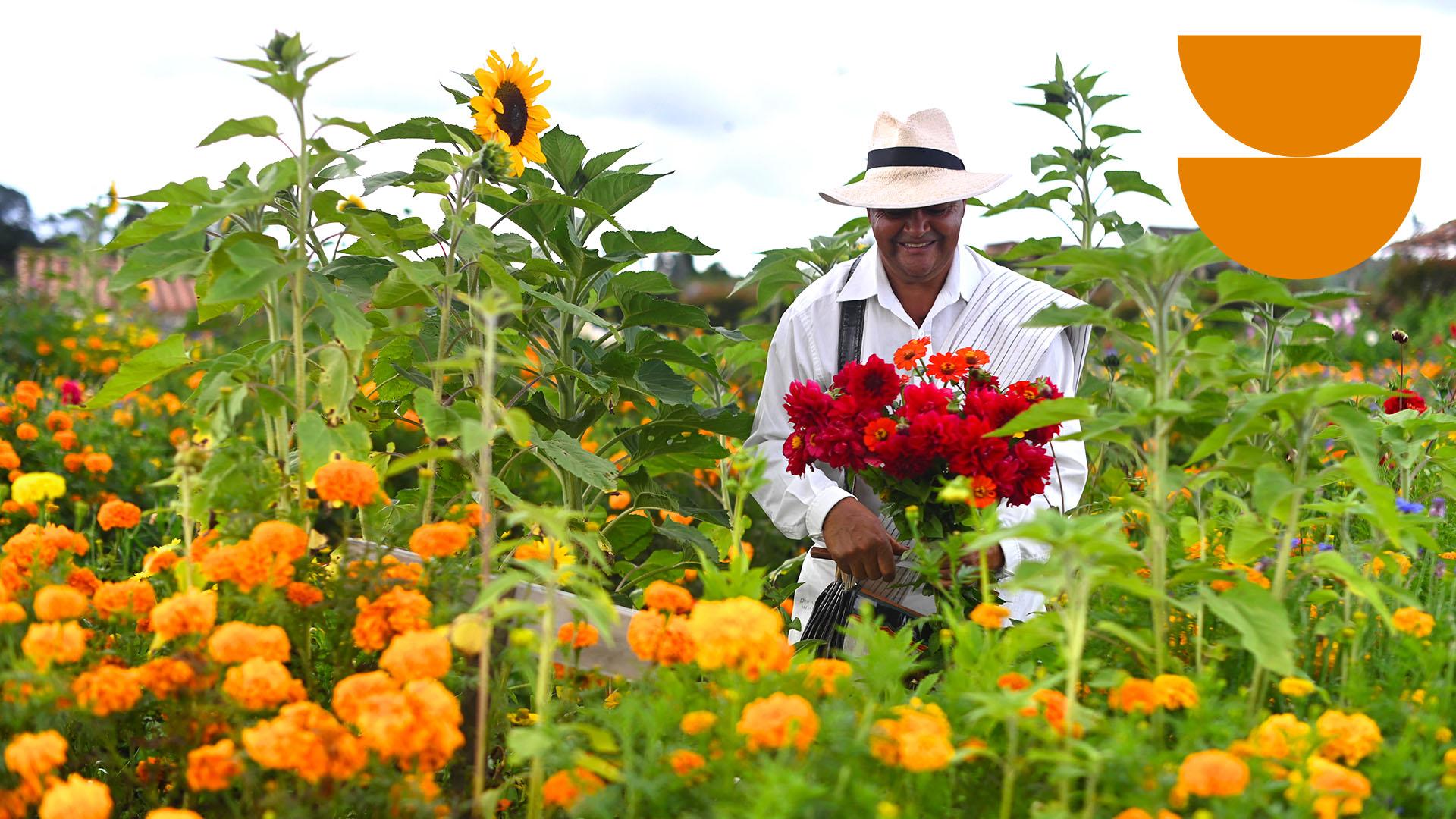 Medellín, un paso adelante para recuperar el turismo